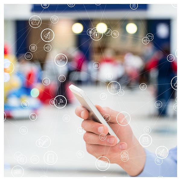 services admistria audit réseau